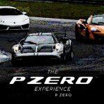 P ZERO の歴史30年 満足度・安全性は今後へ向けた序章