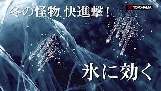 ヨコハマ スタッドレスタイヤ iceGUARD 6 ムービー